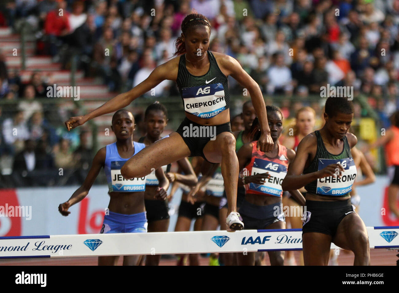 Brussels, Belgium. 31st Aug, 2018. Beatrice Chepkoech of Kenya competes during the women's 3,000m steeplechase at the IAAF Diamond League athletics meeting in Brussels, Belgium, Aug. 31, 2018. Beatrice Chepkoech claimed the title in a time of 8 minutes and 55.10 seconds. Credit: Zheng Huansong/Xinhua/Alamy Live News - Stock Image