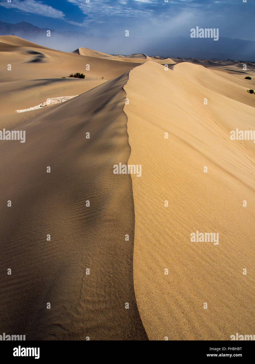 Ridge of Sand Dune, Mesquite Dunes, Death Valley National Park Stock Photo