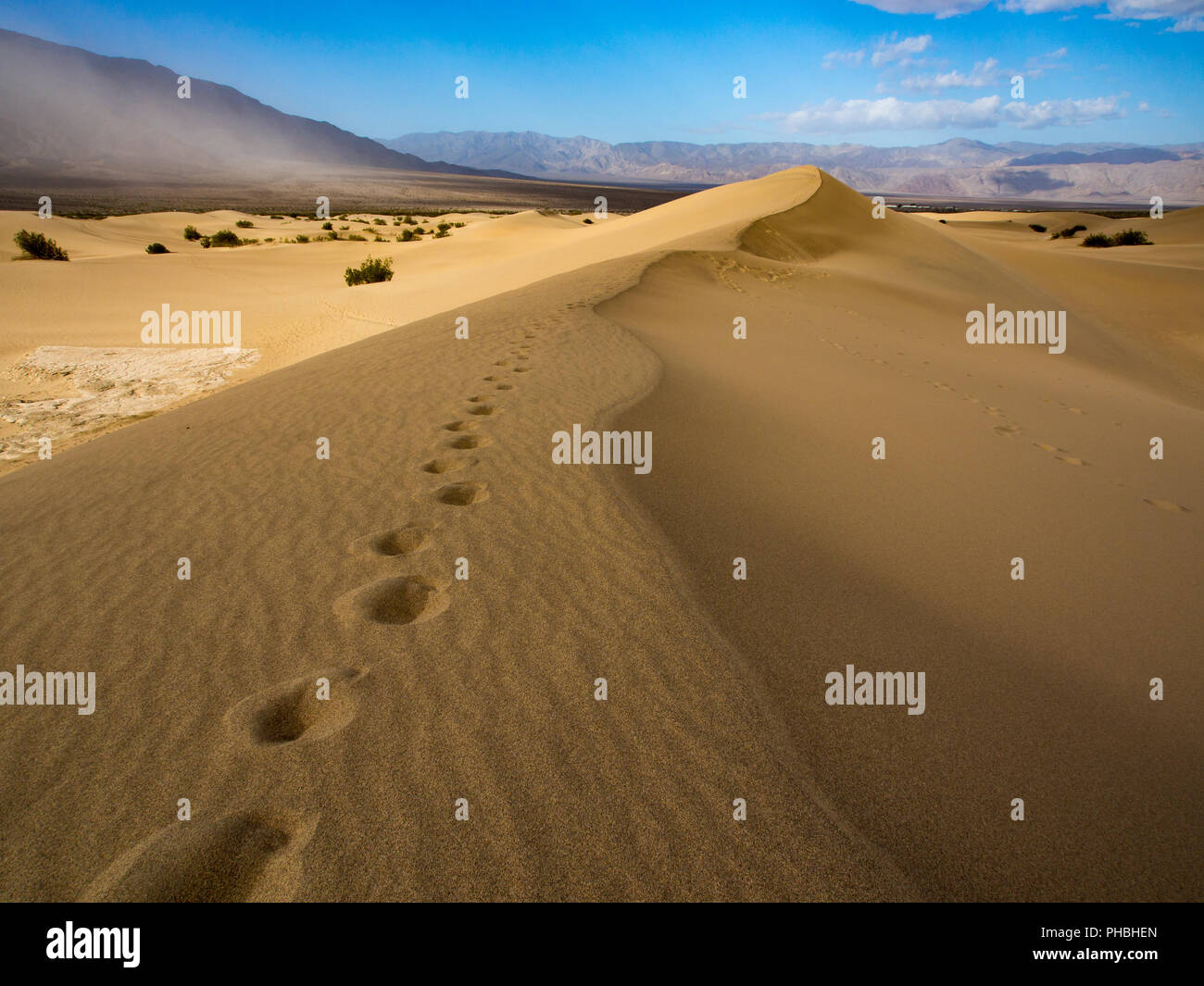 Footprints in the Sand, Path Along Sand Dune Ridge, Death Valley National Park - Stock Image
