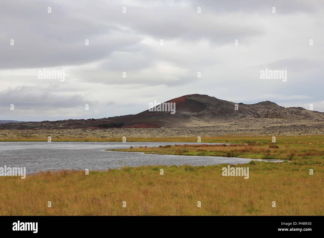 Old lava fields, green meadow and pond in Iceland. - Stock Image