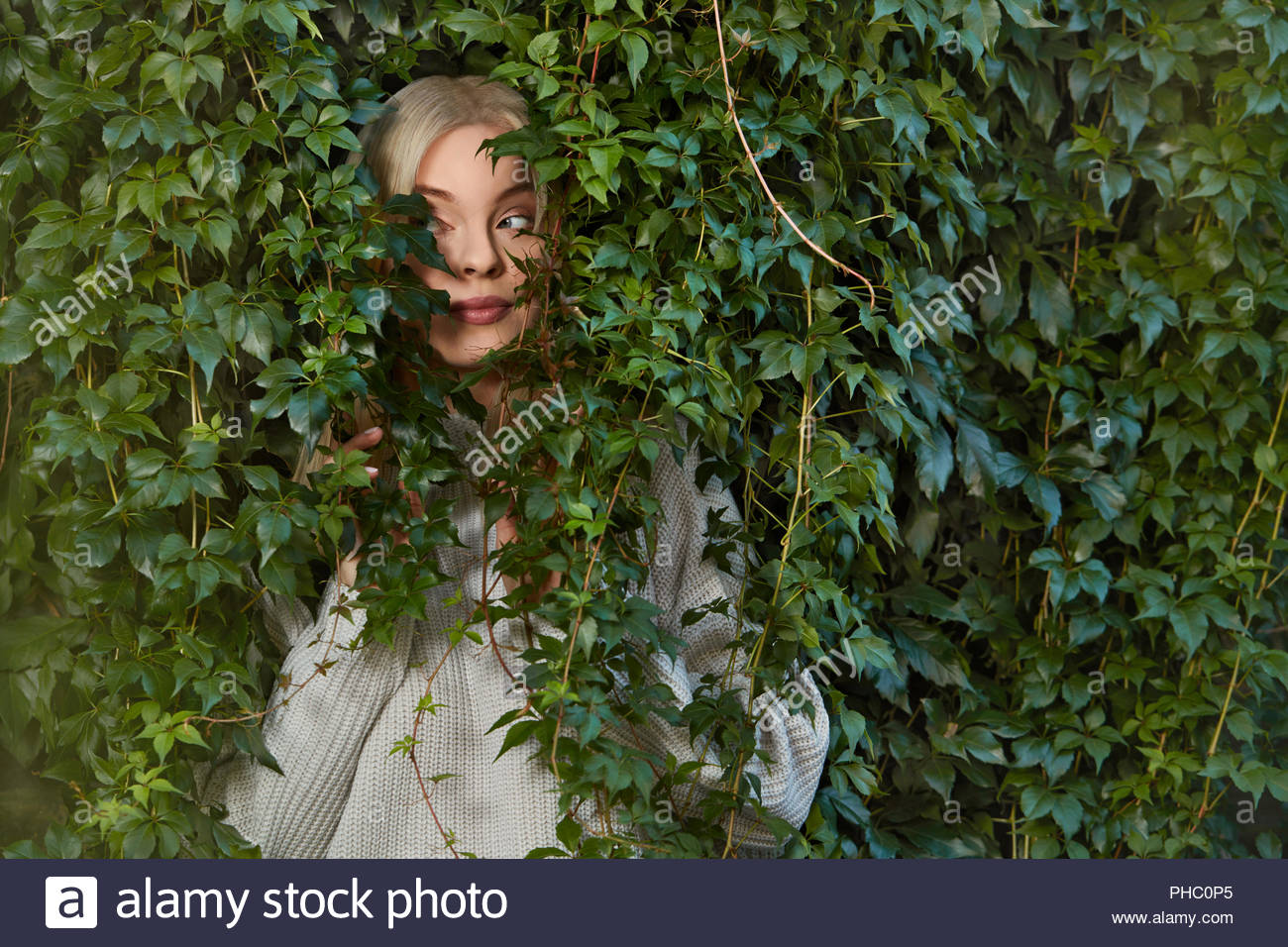 Young woman hiding in hedge. - Stock Image