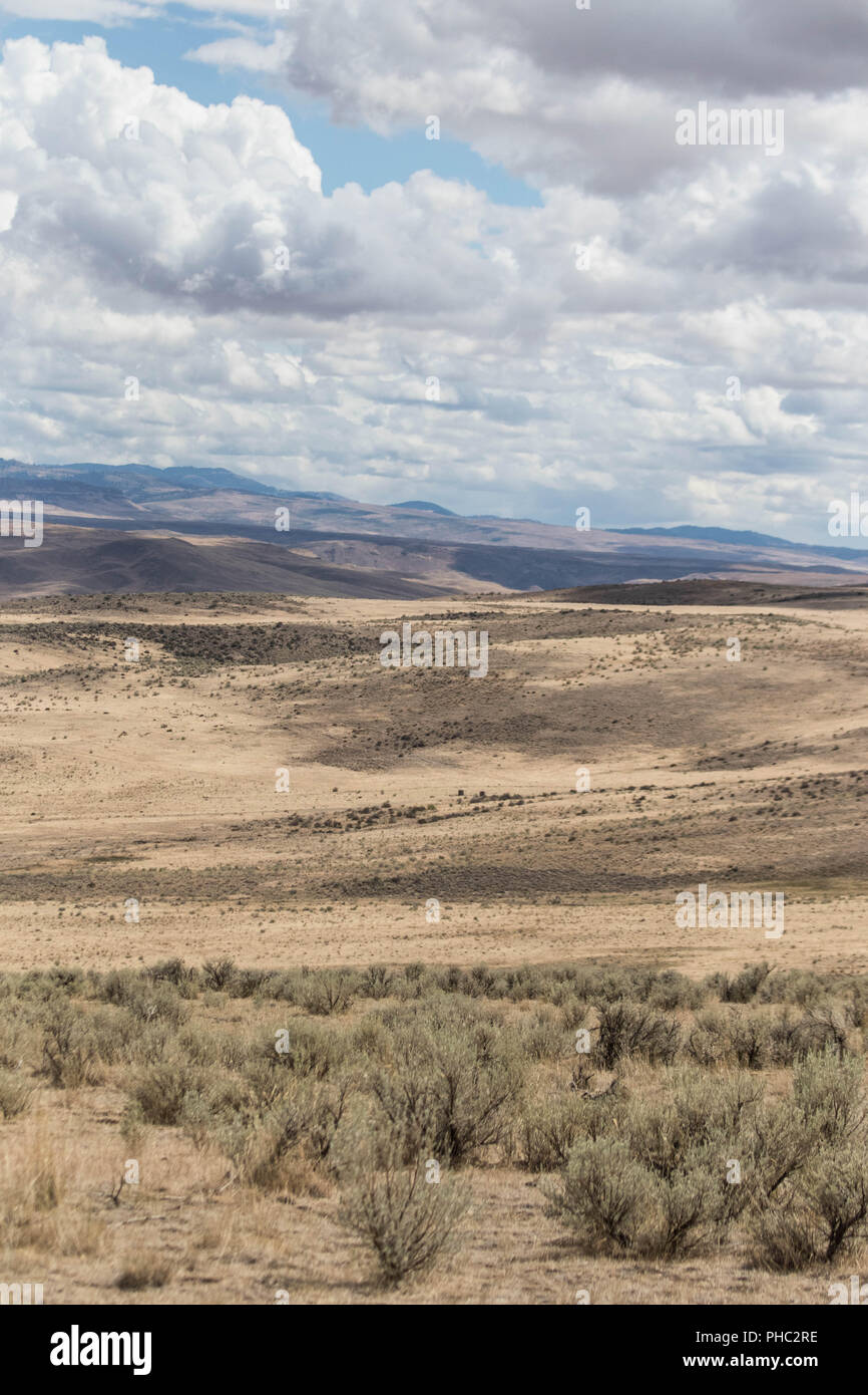 Fluffy clouds pass over the rolling hills of the Owyhee Canyonlands. - Stock Image