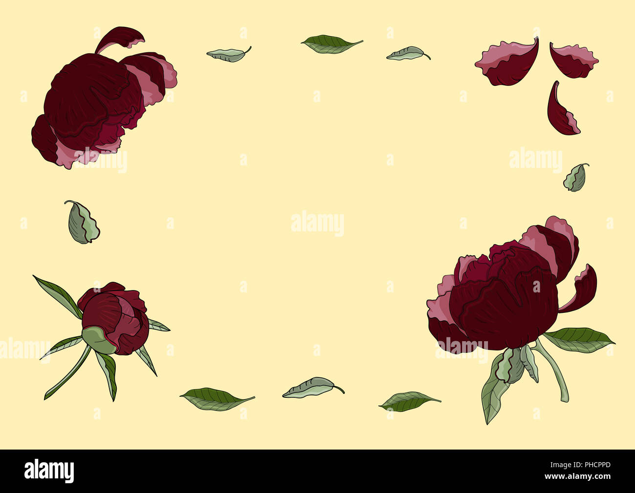 Frame of dark red peony flowers, buds and green leaves. Vintage botanical illustration of beautiful plants isolated on the light orange background. Fo Stock Photo