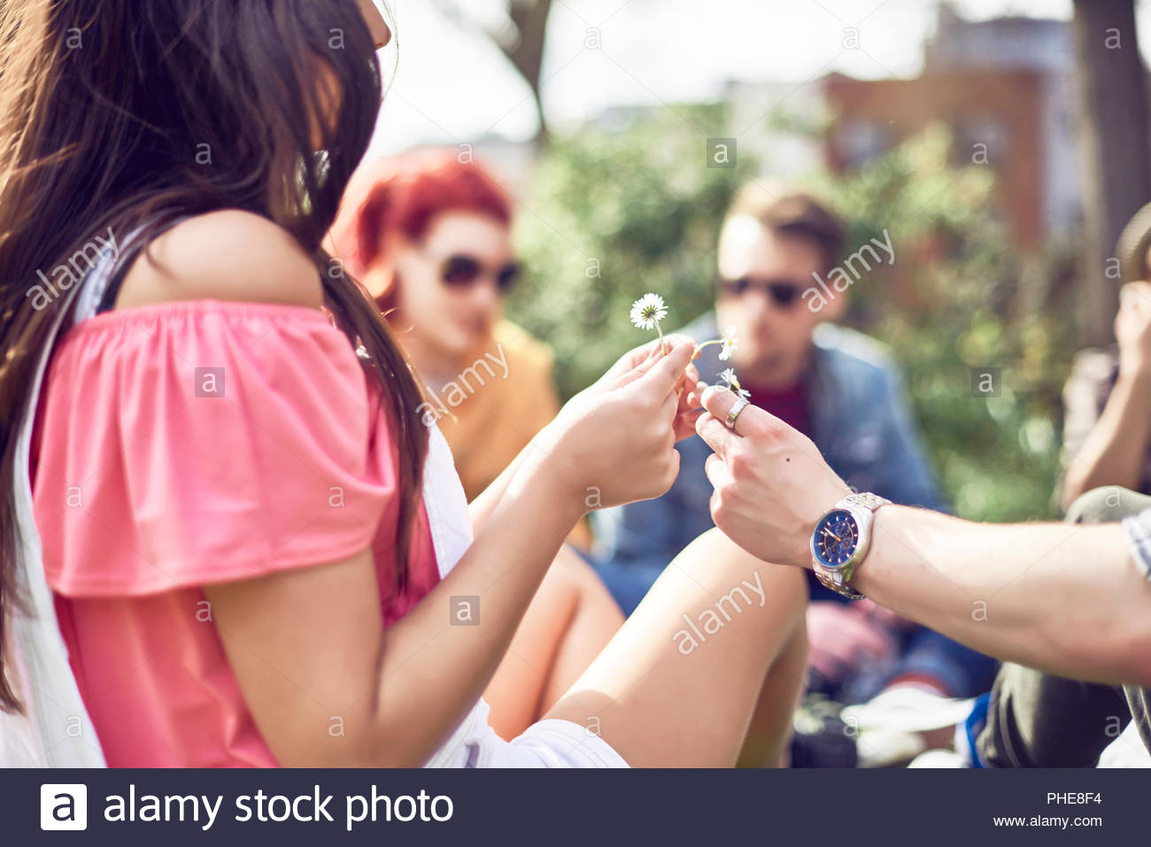 Teenage couple picking daisies in park - Stock Image