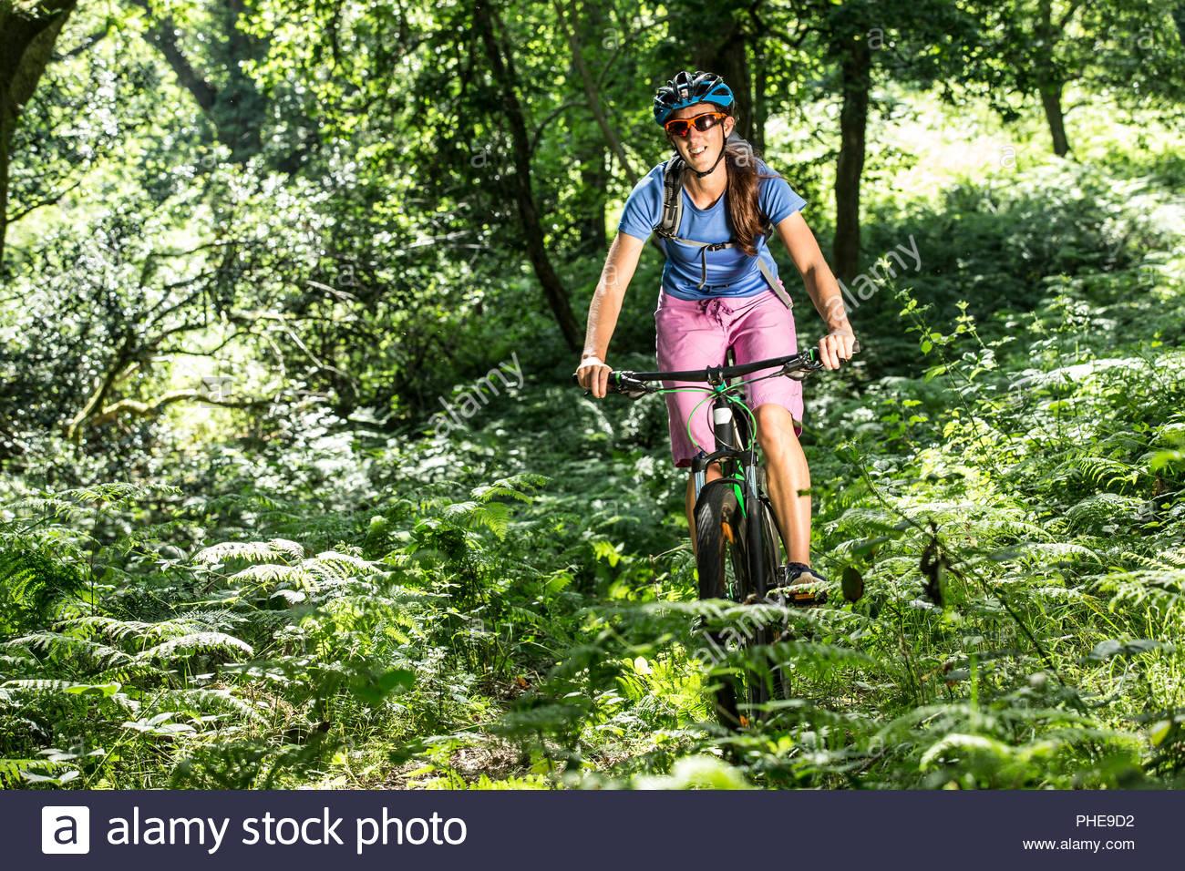 Woman mountain biking in forest - Stock Image