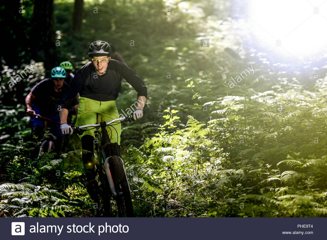 Man mountain biking in forest - Stock Image