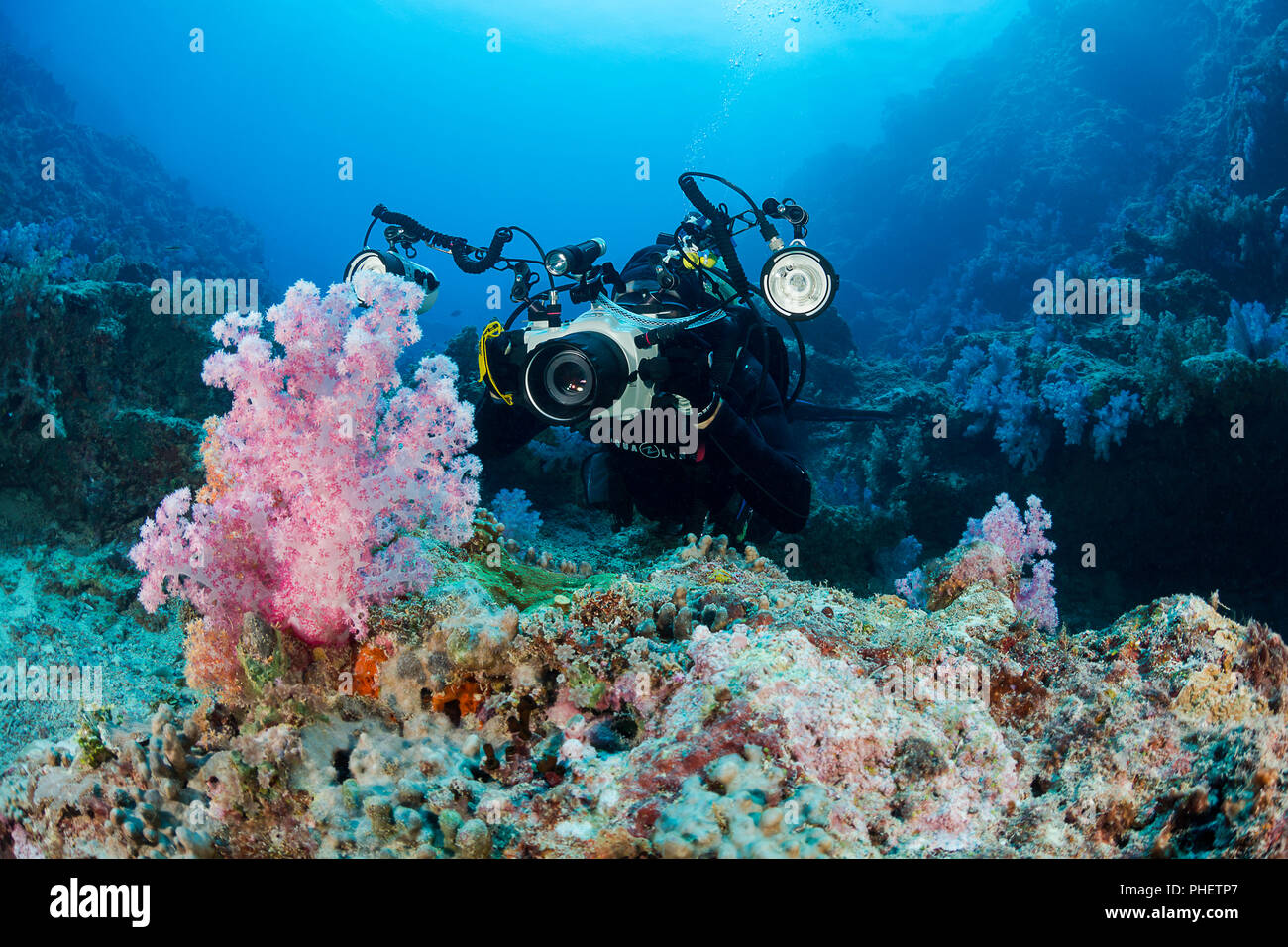 A diver (MR) lines up on soft coral with his SLR camera in an underwater housing with strobes aimed at some alcyonarian soft coral off the island of Y - Stock Image