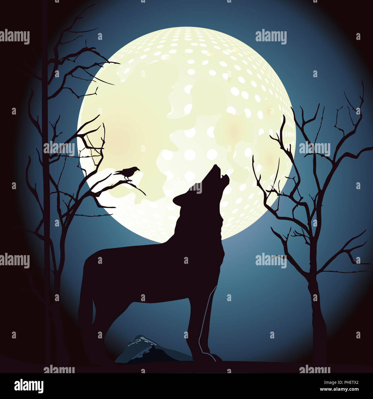 Wolf howls at the moon - Stock Image