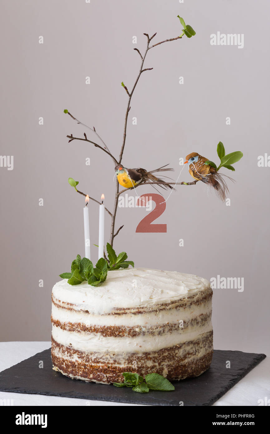 Wondrous Delicious Birthday Cake With Branch Of A Tree Birds Candles And Funny Birthday Cards Online Chimdamsfinfo