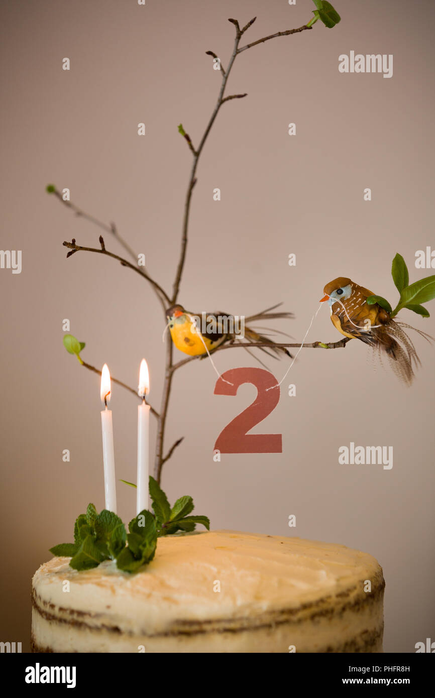 Superb Delicious Birthday Cake With Branch Of A Tree Birds Candles And Funny Birthday Cards Online Eattedamsfinfo