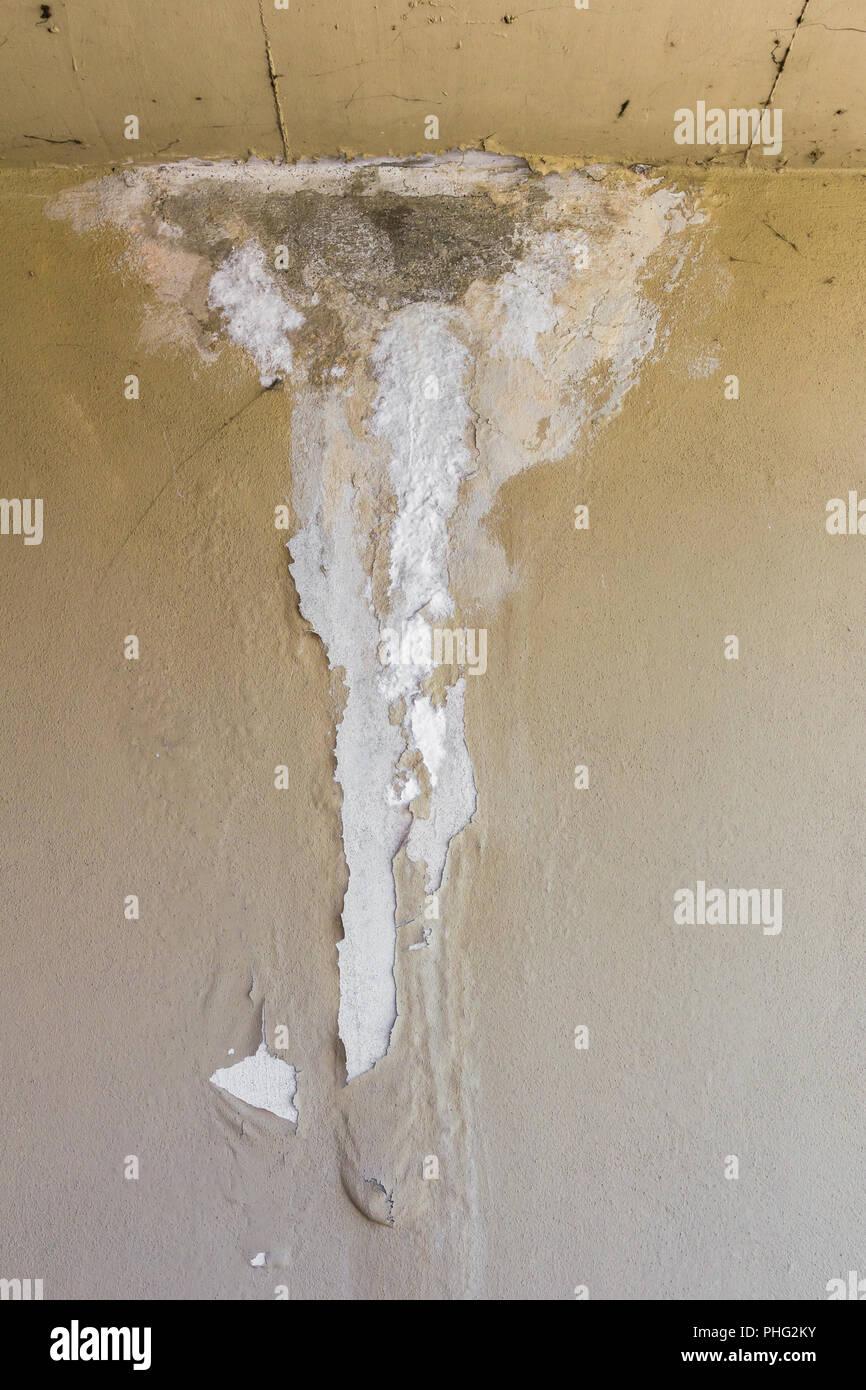 Damp wall - Stock Image
