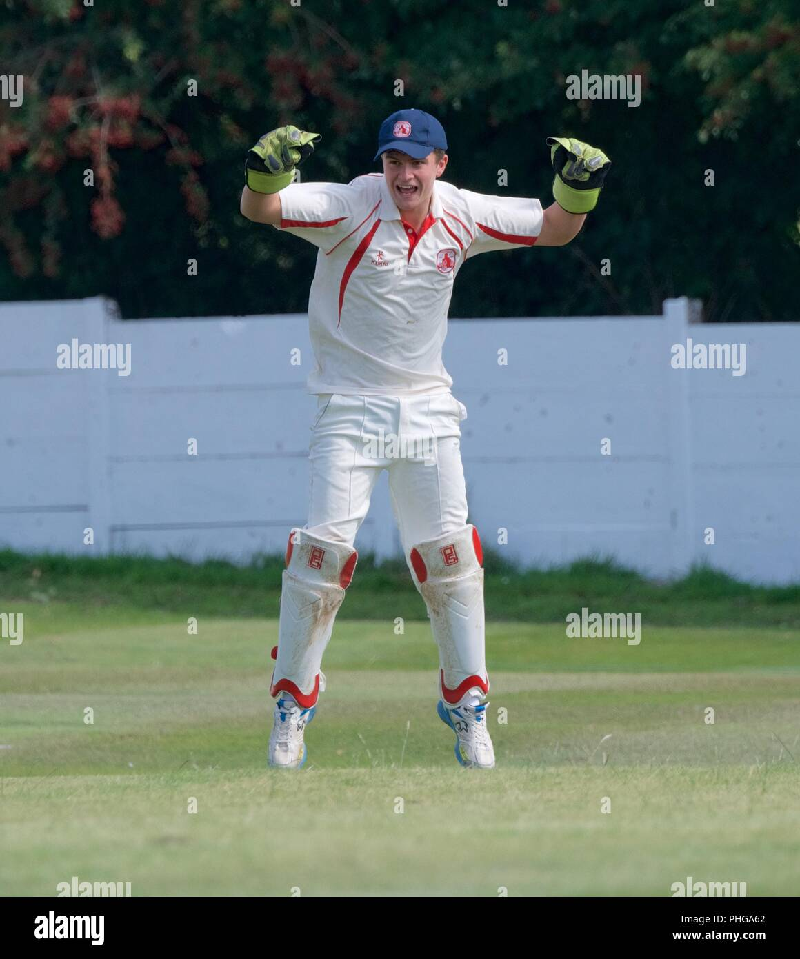 A wicket-keeper appeals in a second eleven match between Tintwistle and Mottram - Stock Image