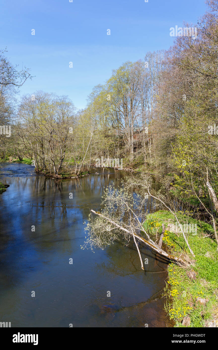 River flowing through a deciduous forest in spring Stock Photo