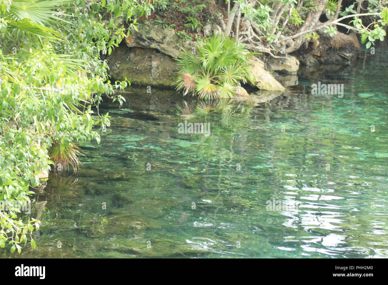 laguna Stock Photo