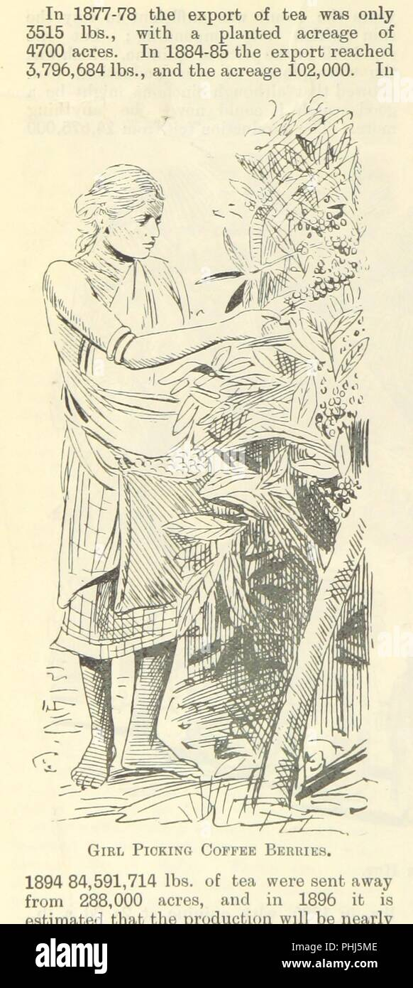 """Image  from page 138 of 'Letters from India and Ceylon, including the Manchester of India, the Indian Dundee, and Calcutta jute mills ... 1895-96. Reprinted from the """"Dundee Advertiser.""""' . - Stock Image"""