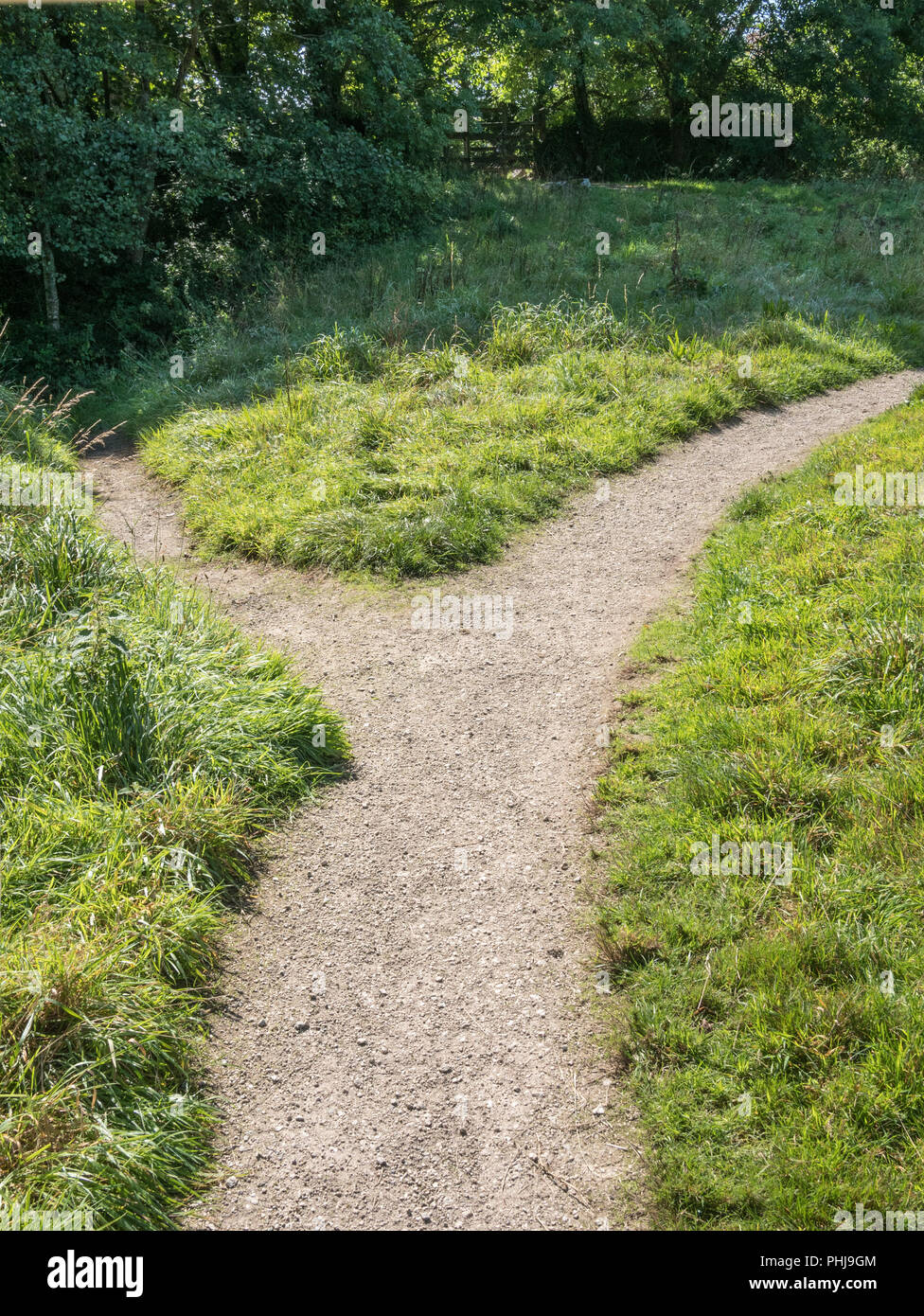 Small branching footpath - metaphor for changing direction, diverging paths, alternative route, career changes, splitting up, going separate ways. - Stock Image