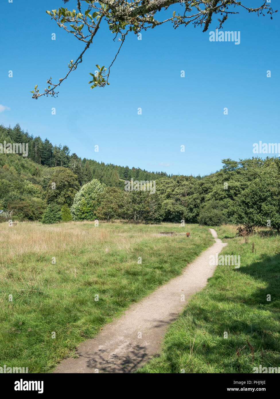 Footpath in the Cornish town of Lostwithiel. Long road ahead metaphor. - Stock Image