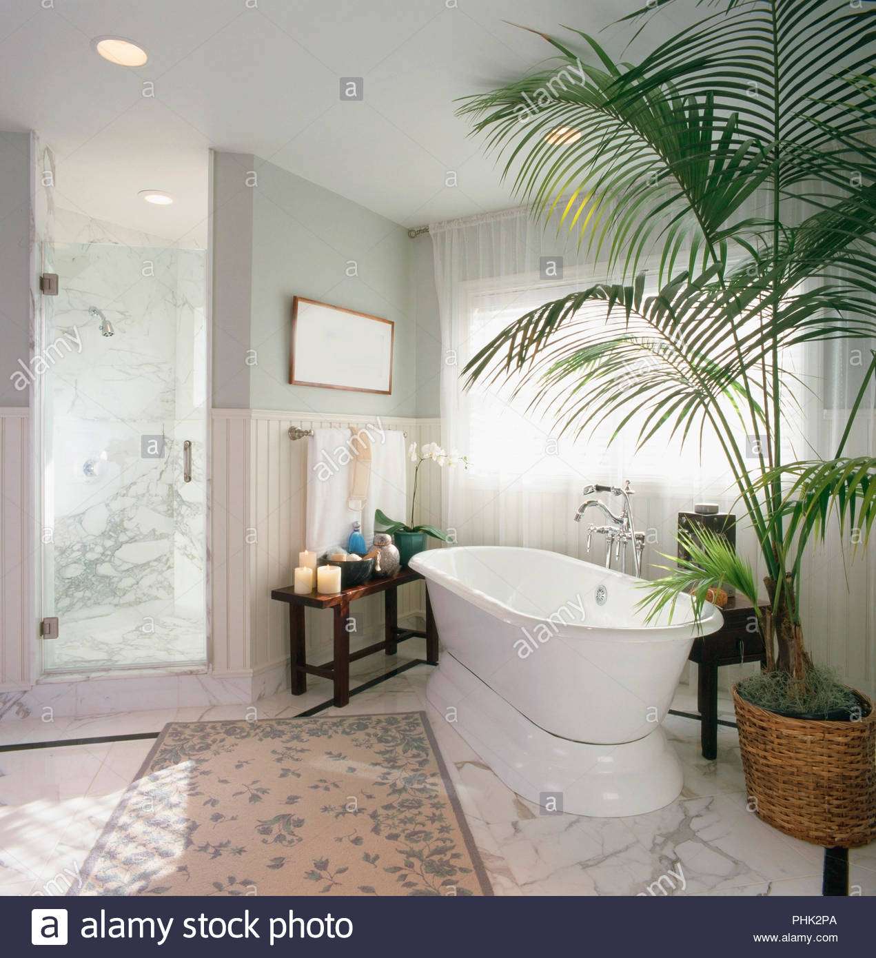 Bath and shower with potted plants - Stock Image