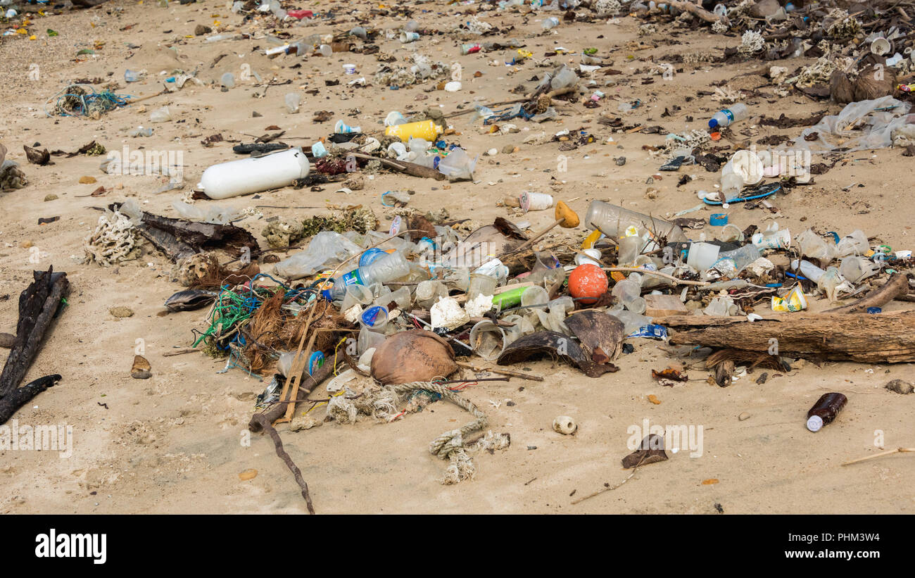 Close-up of the oceanic debris washed up on the beach of Komodo Island National Park, Indonesia - Stock Image