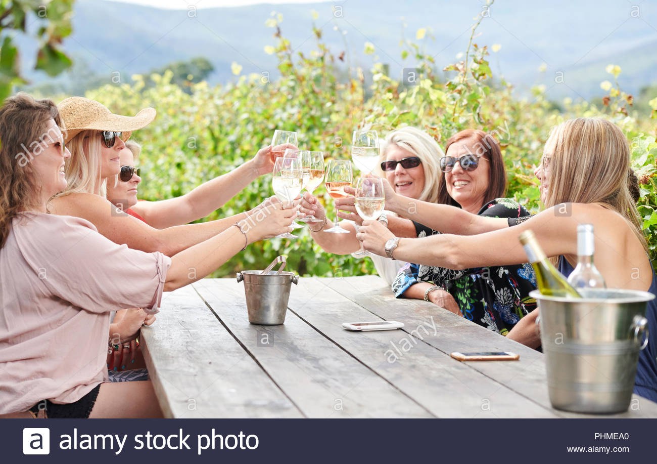 Friends making celebratory toast during vineyard lunch - Stock Image
