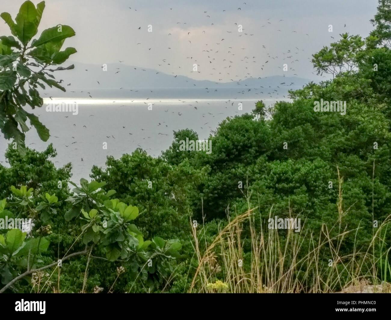 Lake Kivu, Rwanda (africa) - Stock Image