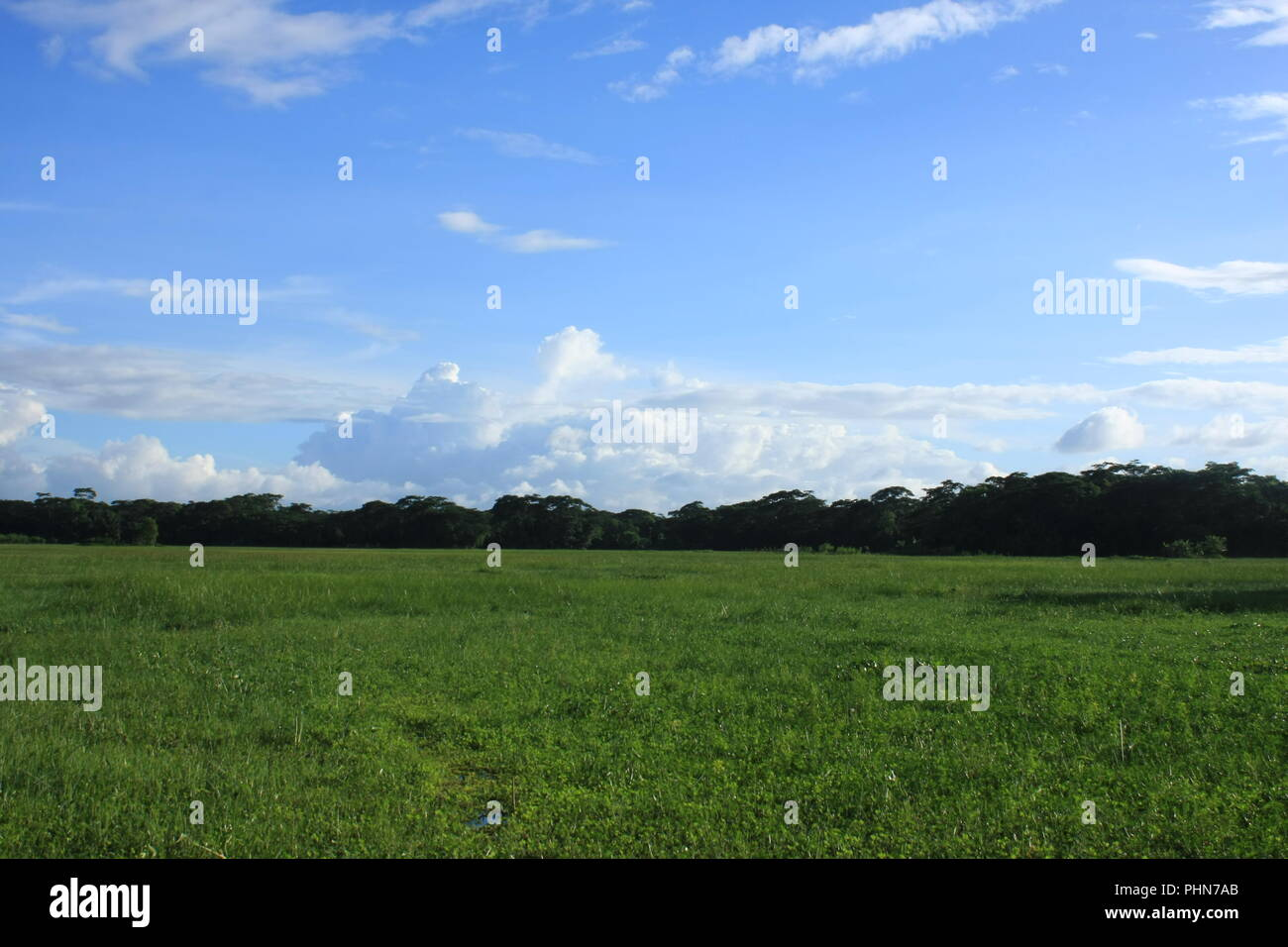 Landscape of breadth full Lake and Sky - Stock Image