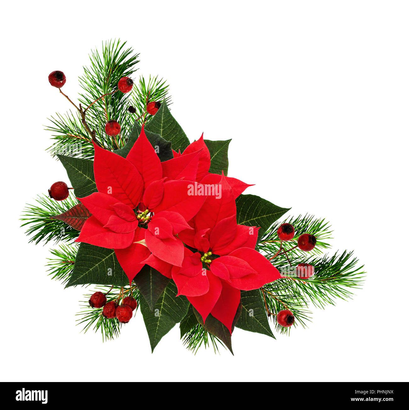 Handmade* Traditional Poinsettia* wreath* Christmas Flower* Burlap*