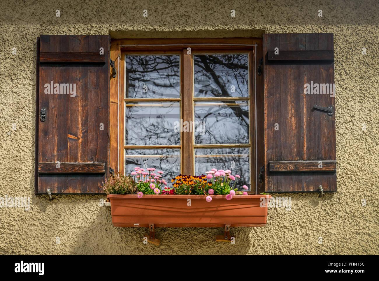 Fenster, Blumen, Preysingstrasse, Alt-Haidhausen, Haidhausen, Muenchen, Bayern, Deutschland Stock Photo