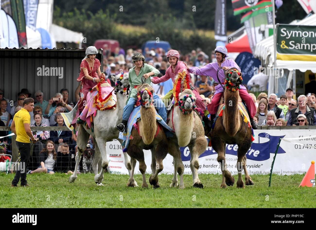 Dorchester, Dorset, UK. 2nd Sept, 2018. Dorset County Show, crowds enjoy the Camel racing. Credit: Finnbarr Webster/Alamy Live News - Stock Image