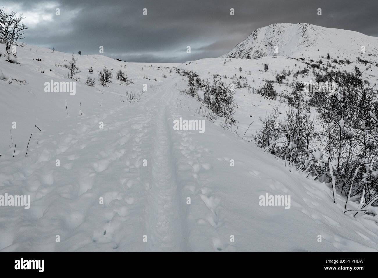 Snow Landscape, near Volda Ørsta (norway) - Stock Image