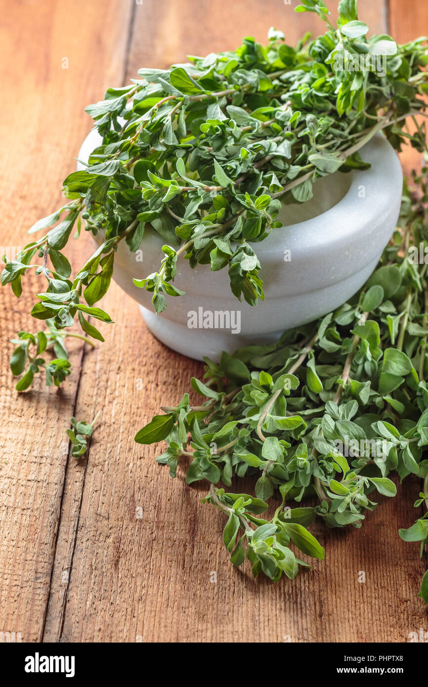 Spicy herb marjoram on a wooden table - Stock Image
