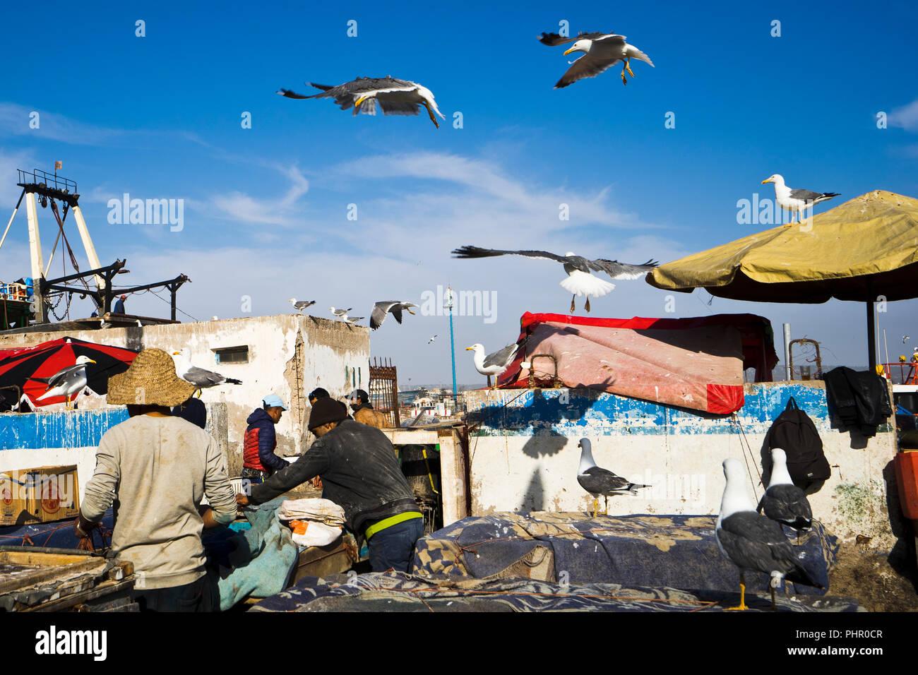 Fischereihafen von Essaouira in Marokko - Stock Image
