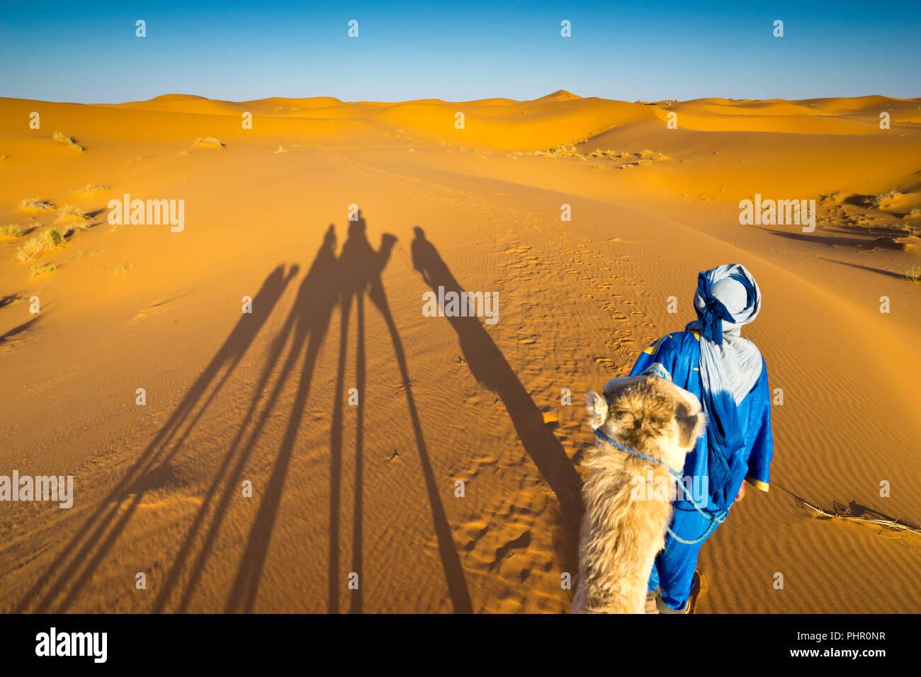 Kamelritt durch die Wüste Sahara in Marokko - Stock Image