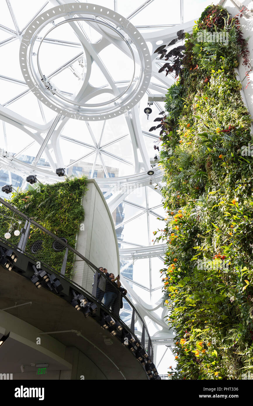 Seattle, Washington: Visitors enjoy the living wall at the Spheres on the Amazon Urban Campus. The geodesic structures house office space, retail and  - Stock Image