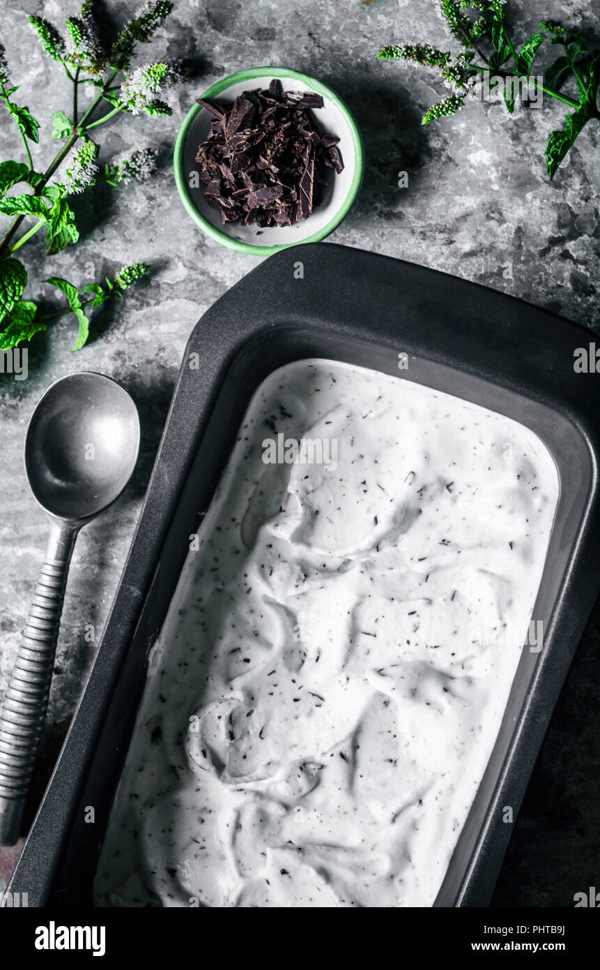 Vegan Chocolate Mint Ice Cream With Coconut Milk Stock Photo