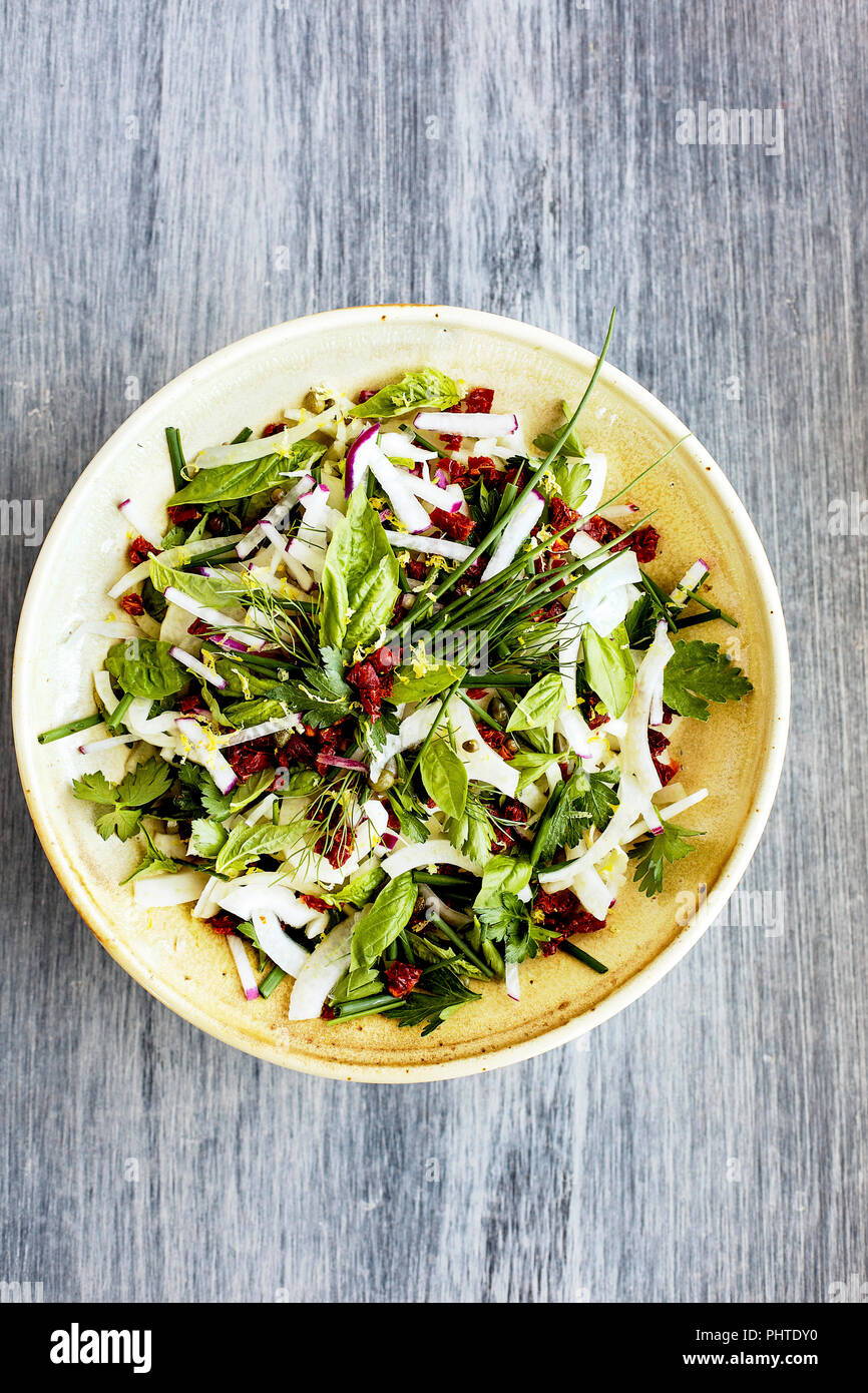 Fennel Herb Salad with Italian Style Salsa Verde. Photographed on a b;ack/grey background. - Stock Image