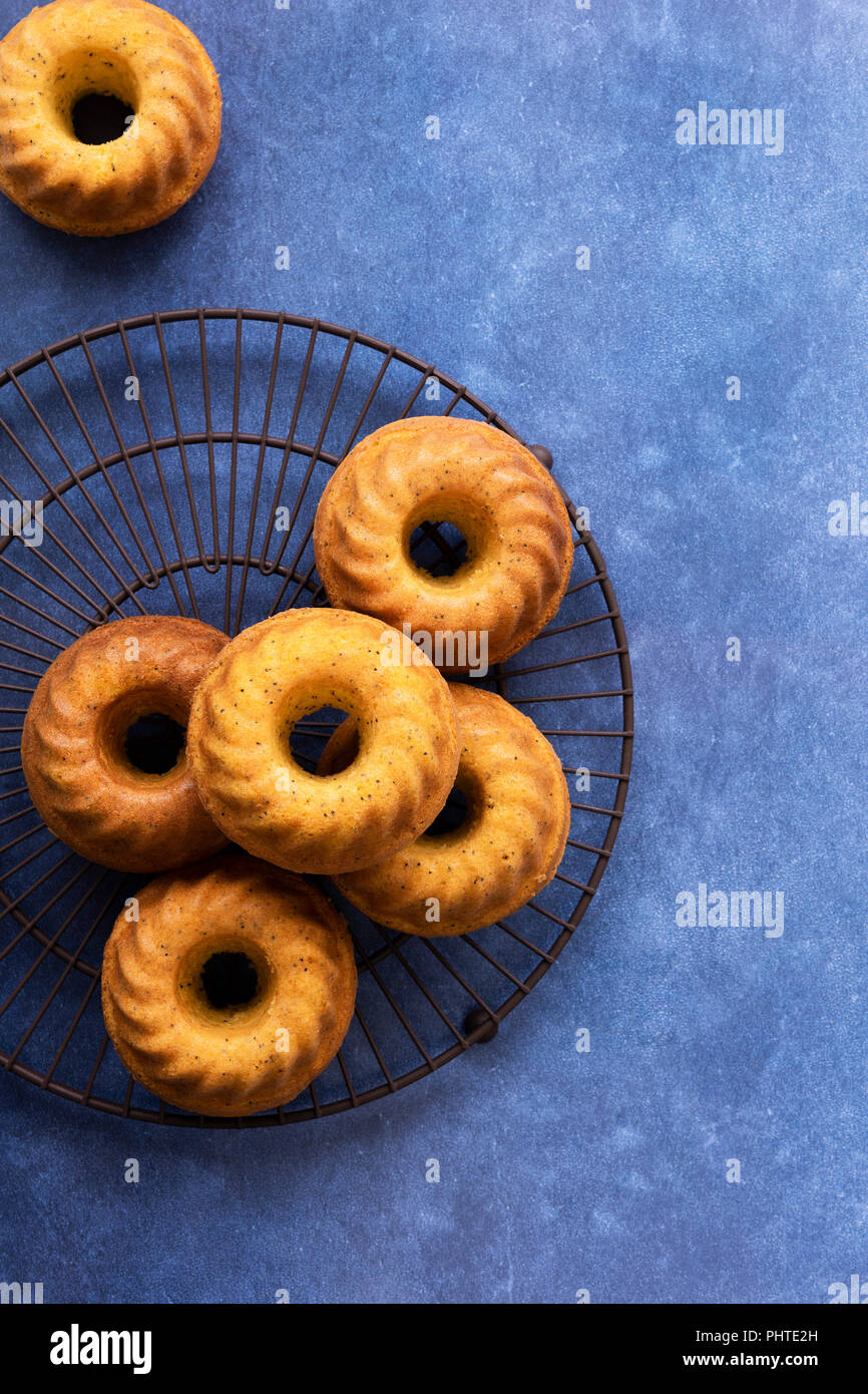 Small home baked orange poppy seed cakes on a blue background. - Stock Image