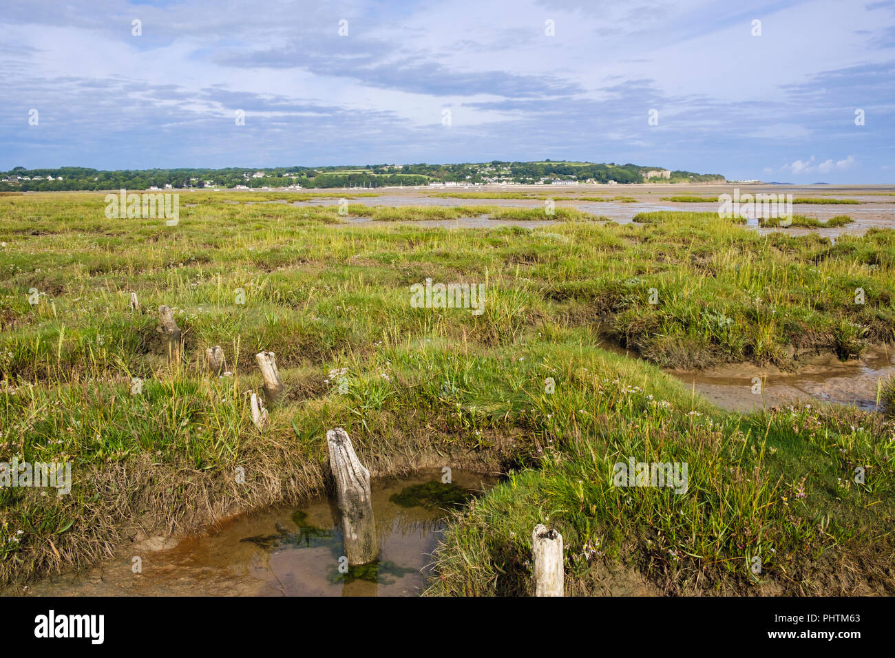 Coastal wetland saltmarsh bog at low tide in Red Wharf Bay (Traeth Coch) AONB from Pentraeth, Isle of Anglesey (Ynys Mon), Wales, UK, Britain Stock Photo