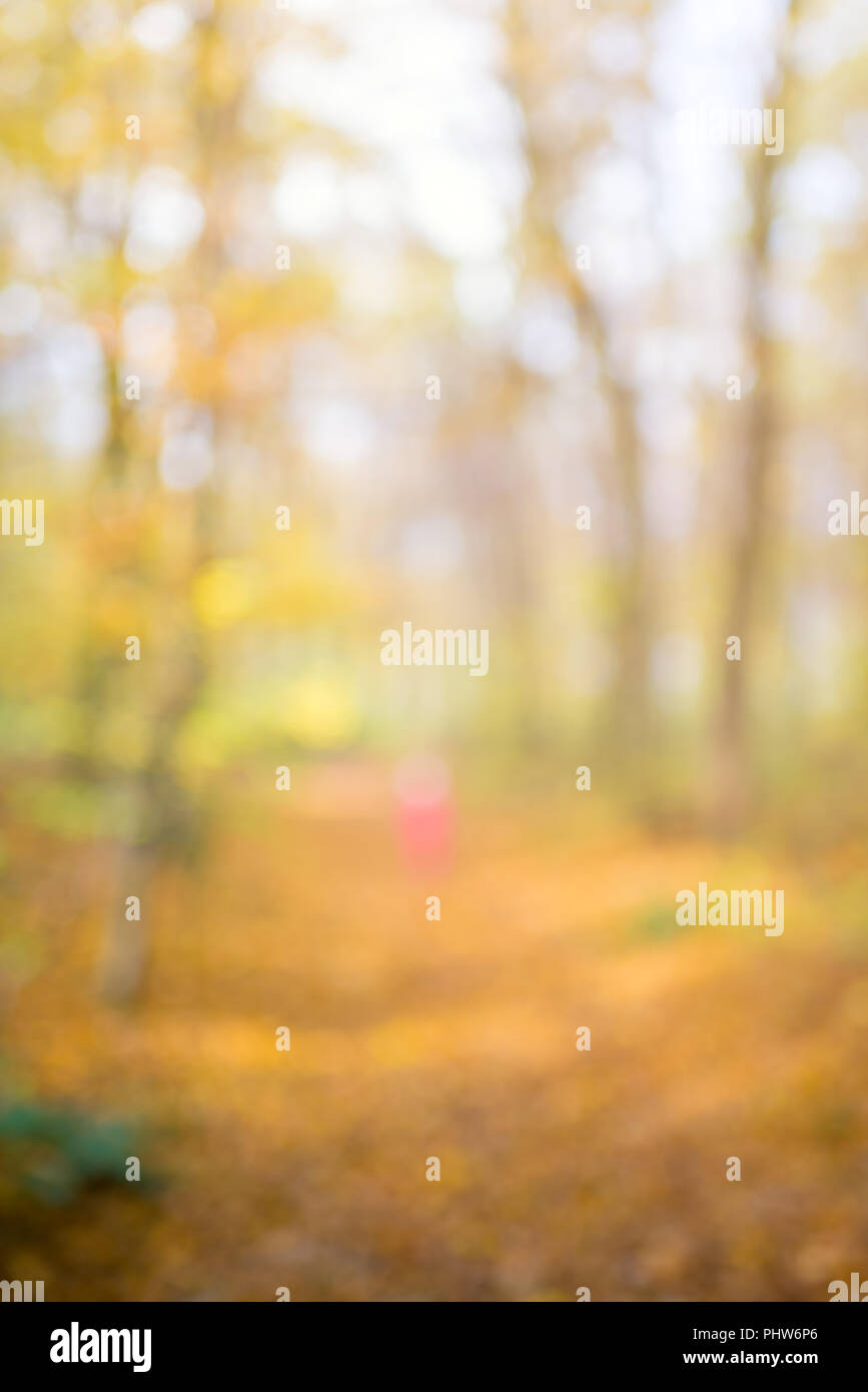 Abstract unfocused and soft background for design. Path in the woods. Magical autumn forest, blur technique - Stock Image