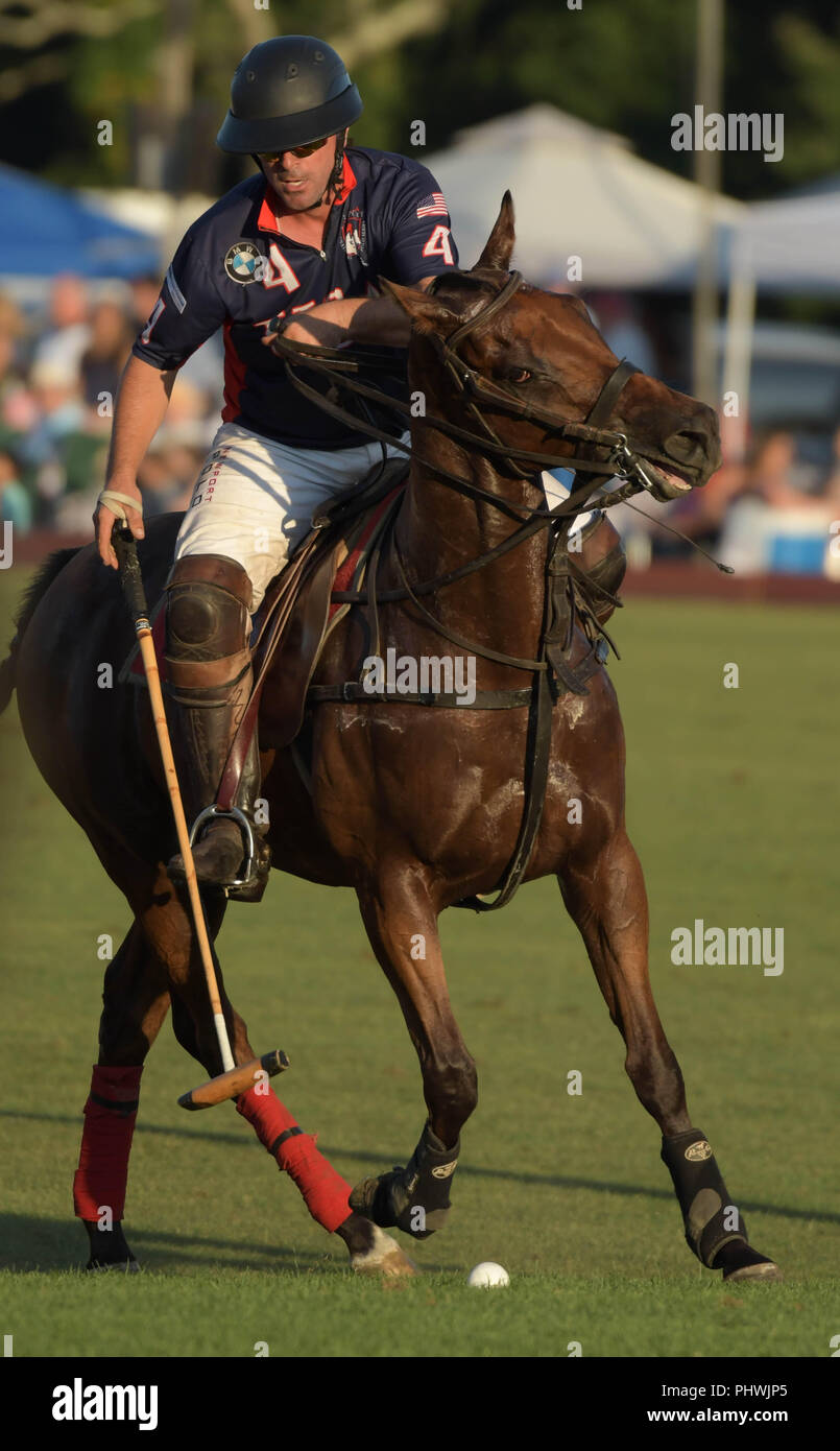 Polo player for Team USA at the annual England vs. USA match in Newport, R.I., USA. - Stock Image