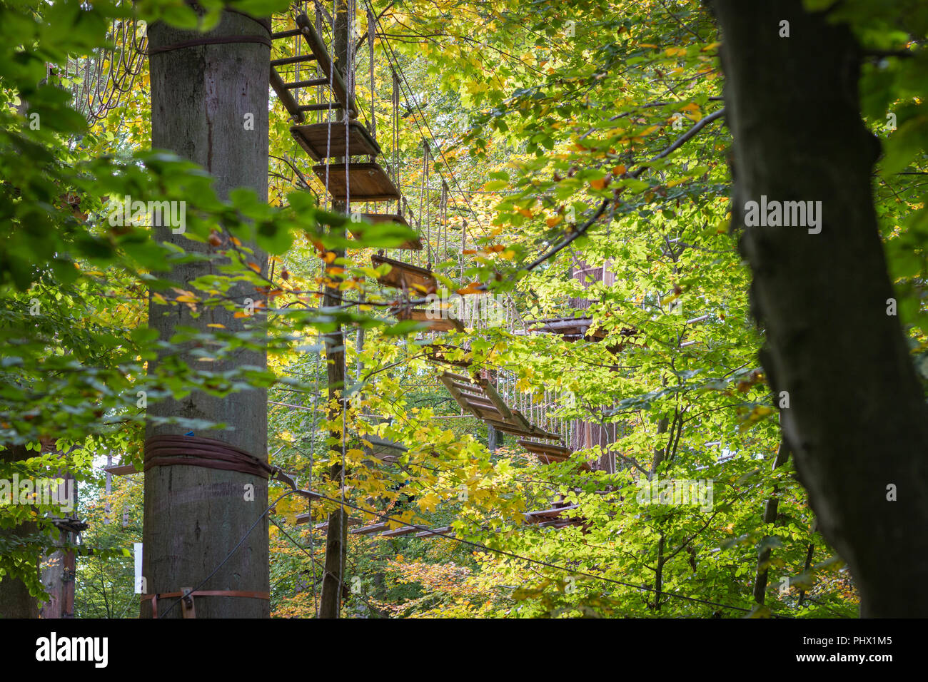 Rope bridge at adventure climbing park with natural background - Stock Image