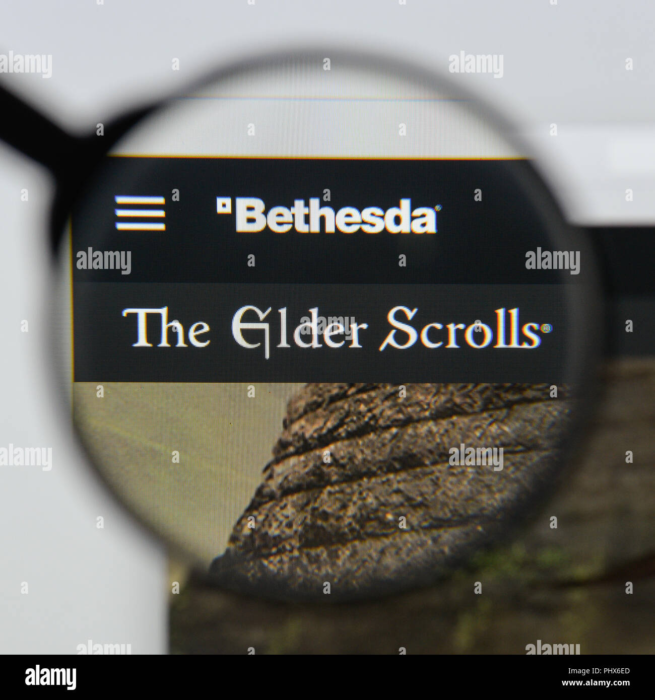 Skyrim Purple Mountain Flower Skyrim Logo Flower Shop Near Me