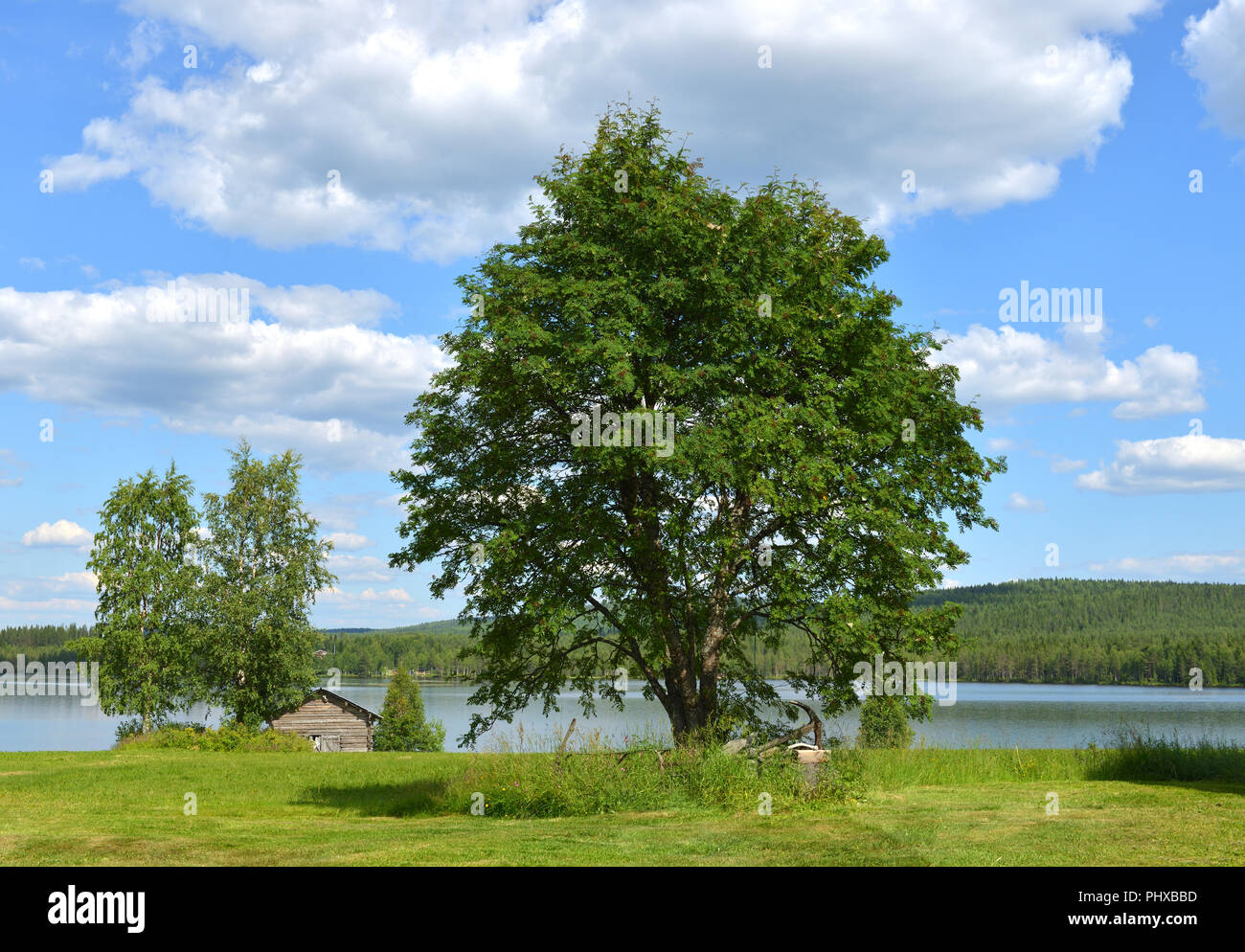 Northern landscape in summer. Lake. Finnish Lapland - Stock Image