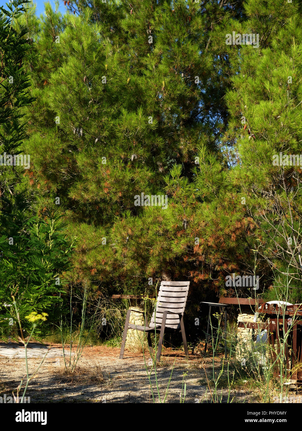 Restful place with seat on land at a private french house and garden, in summer - Stock Image