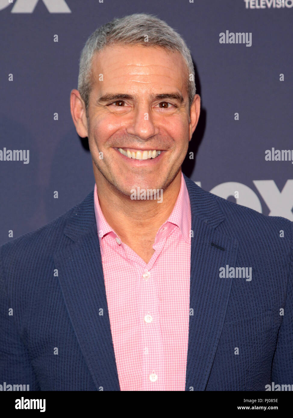 Celebrities attend FOX Summer All-Star Party, Arrivals, TCA