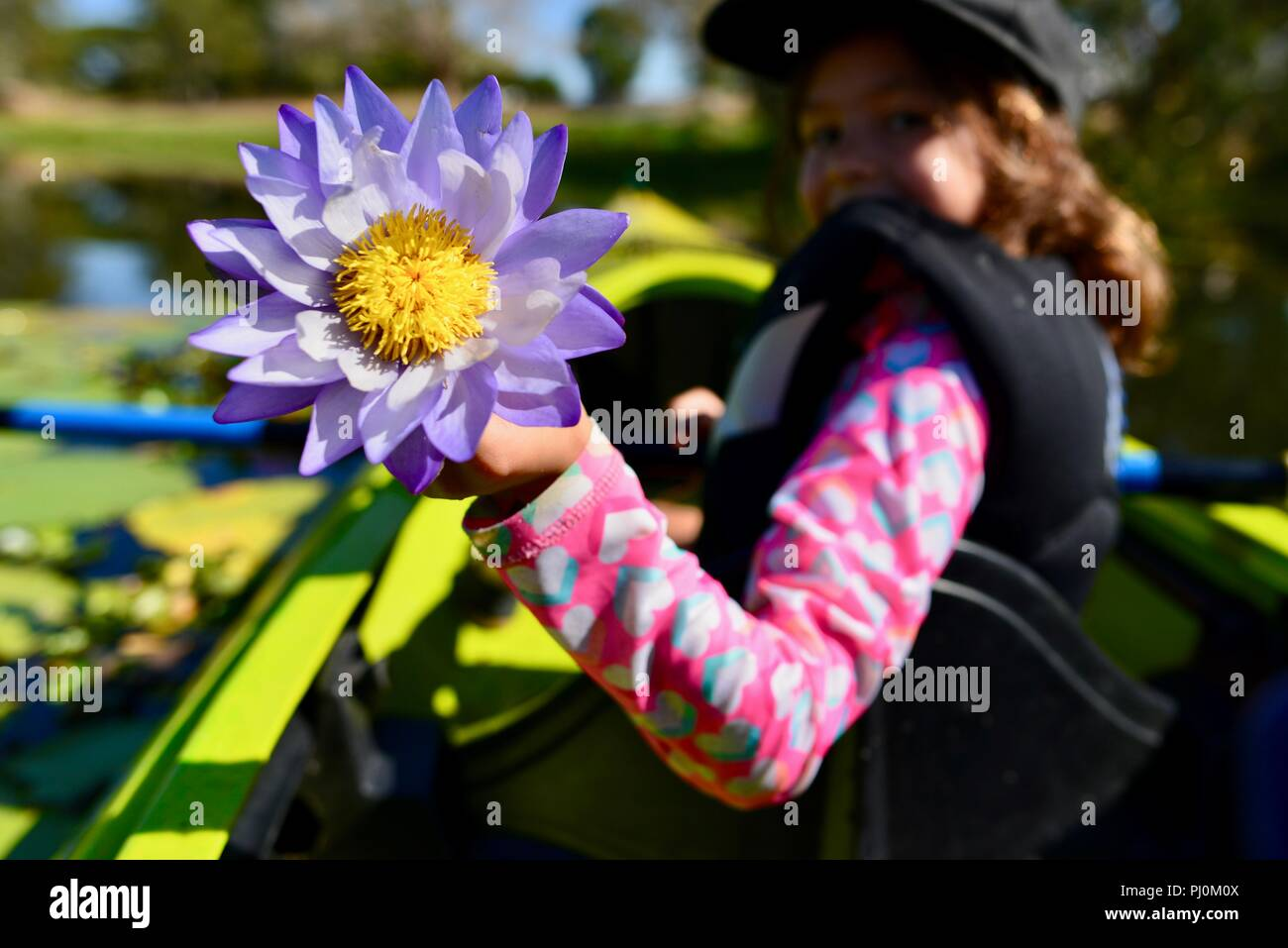 Young girl holding a purple water lily flower while smiling ross young girl holding a purple water lily flower while smiling ross river qld australia izmirmasajfo