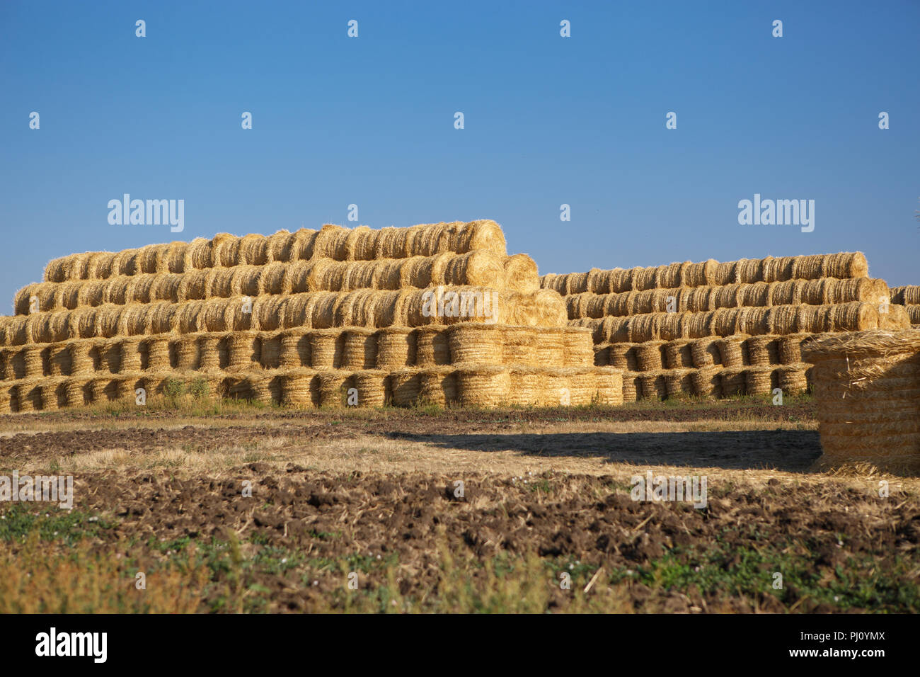 Dry Haystack Stock Photos Amp Dry Haystack Stock Images Alamy