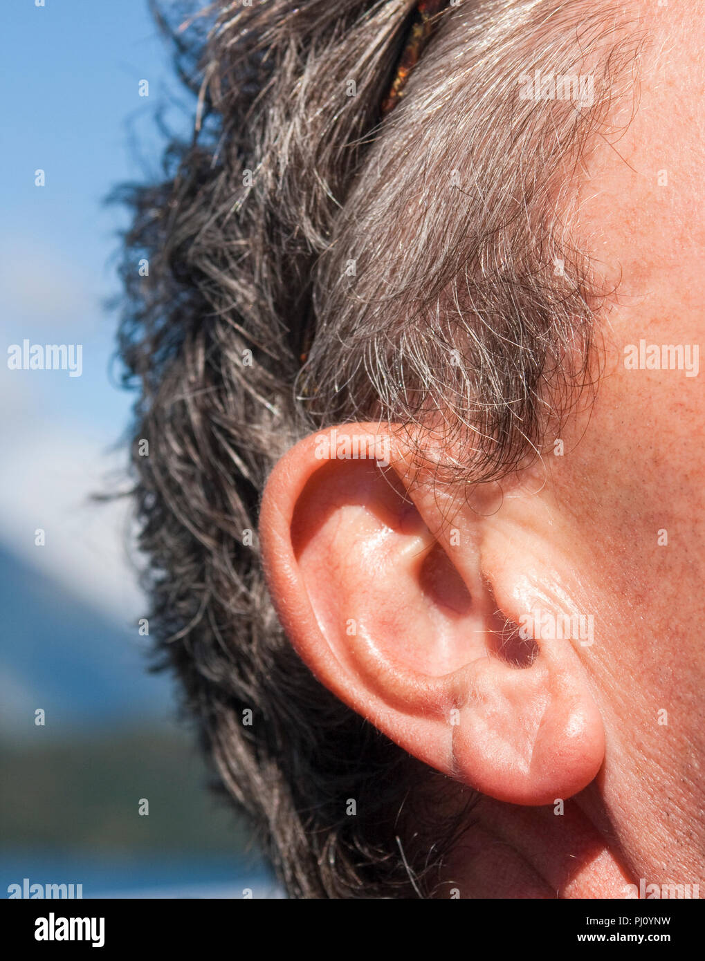 Face of man with focus on ear - Stock Image