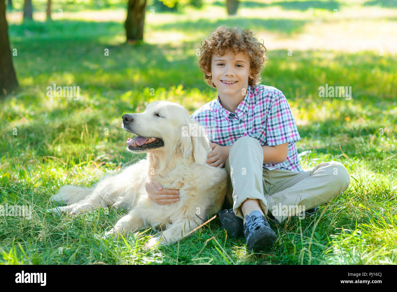 Nice time with a golden retriever - Stock Image