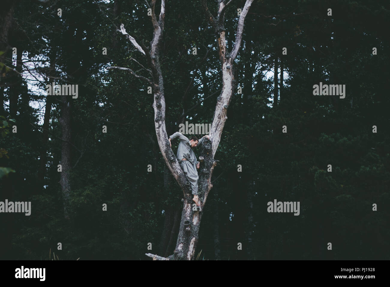 Man moving in nature forest - Stock Image